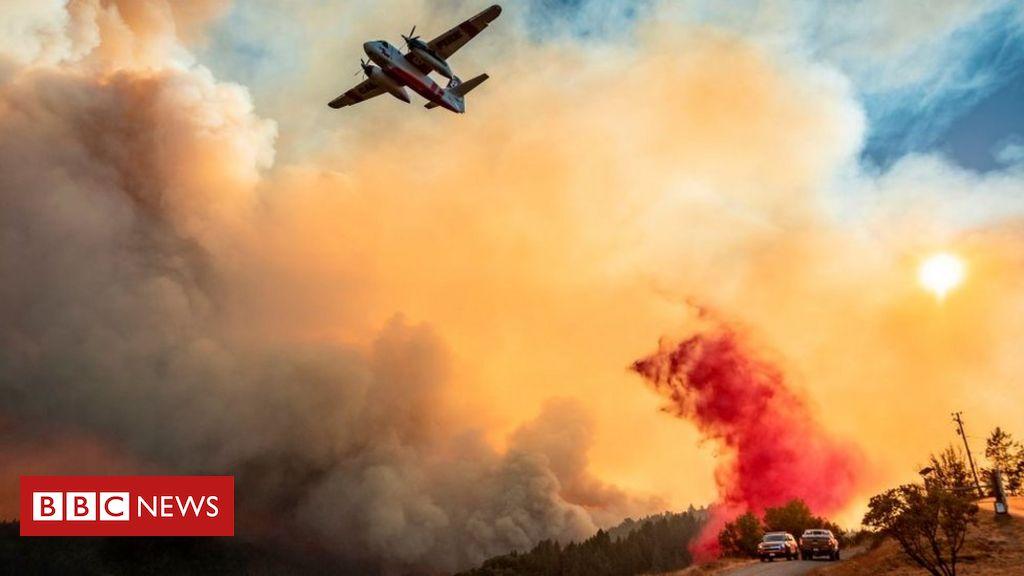 california-wildfires:-trump-declares-major-disaster