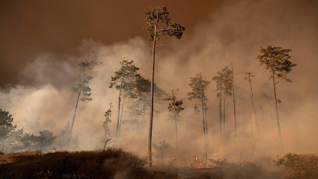 us-west-coast-fires:-smoke-spreads-to-new-york-and-washington