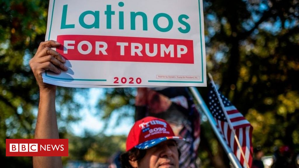 us-election-2020:-why-trump-gained-support-among-minorities