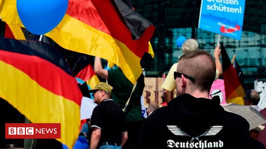 germany-to-spy-on-far-right-afd-party,-reports-say