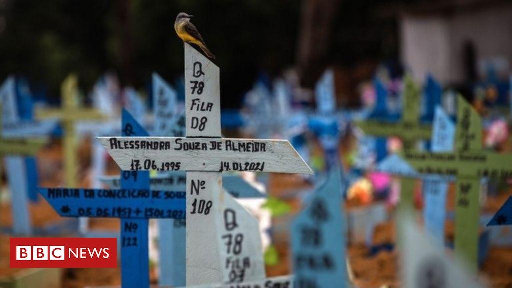 covid:-brazil's-daily-deaths-reach-all-time-high