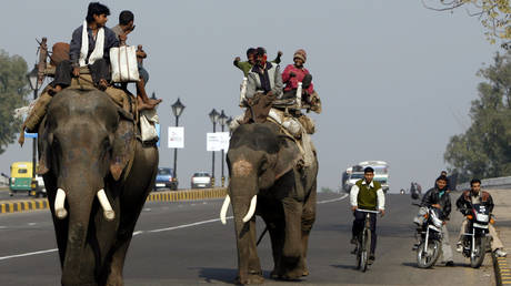 economic-activity-picks-up-across-india-as-mobility-levels-rise