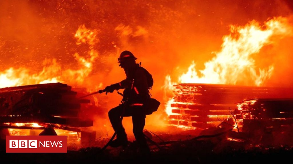 gender-reveal-party-couple-face-jail-over-deadly-california-wildfire