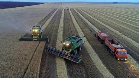 russia's-agricultural-exports-soar-as-shipments-to-europe-&-s.-korea-see-wild-surge