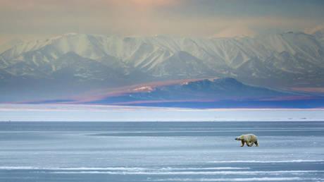 pm-modi-announces-india-will-help-russia-turn-arctic-seas-into-global-trade-route