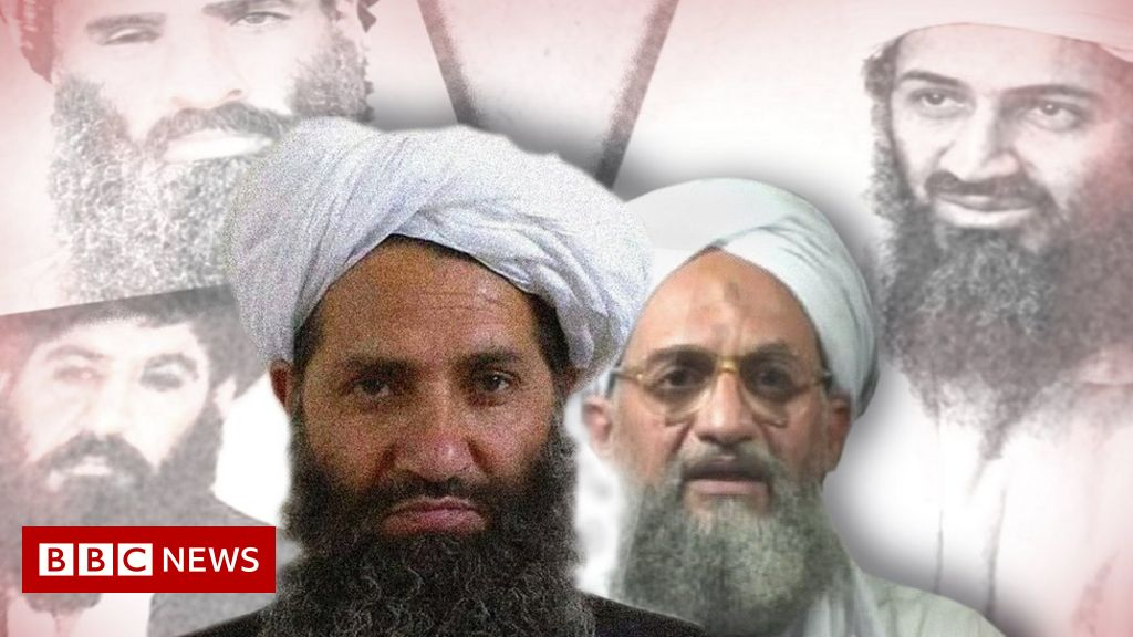 afghanistan:-the-pledge-binding-al-qaeda-to-the-taliban