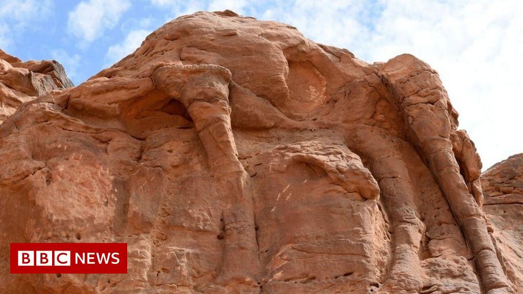 saudi-arabia-camel-carvings-dated-to-prehistoric-era