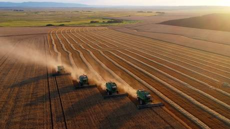 russia-to-hike-grain-export-duty-to-support-domestic-producers